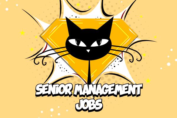 Job Vacancies from PureKat Consultancy