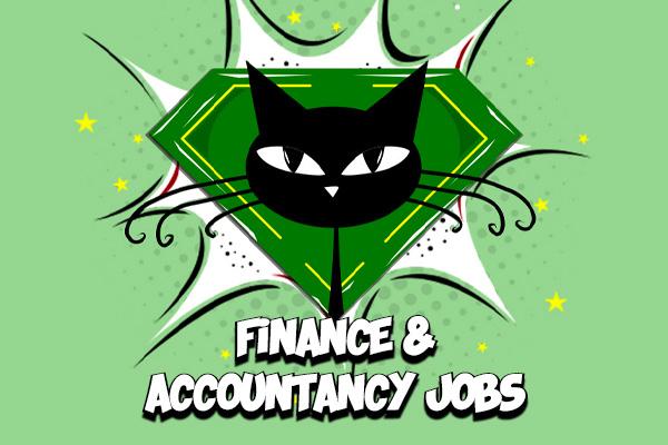 Finance and Accountancy Jobs